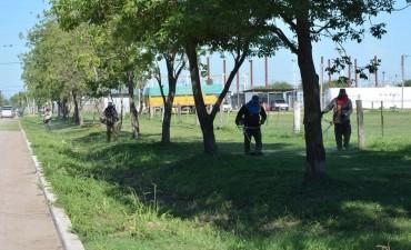 MUNICIPIO REALIZA MANTENIMIENTO DE LA CIUDAD Y ULTIMA DETALLES EN ESPACIO PÚBLICO DE USOS MÚLTIPLES