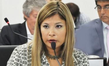SEGOVIA PROPONE CREAR EL PROGRAMA DE CENTROS DE ABORDAJE DE PERSONAS QUE EJERCEN VIOLENCIA