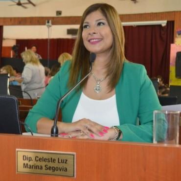 CELESTE SEGOVIA, LA DIPUTADA DE LOS 1000 PROYECTOS