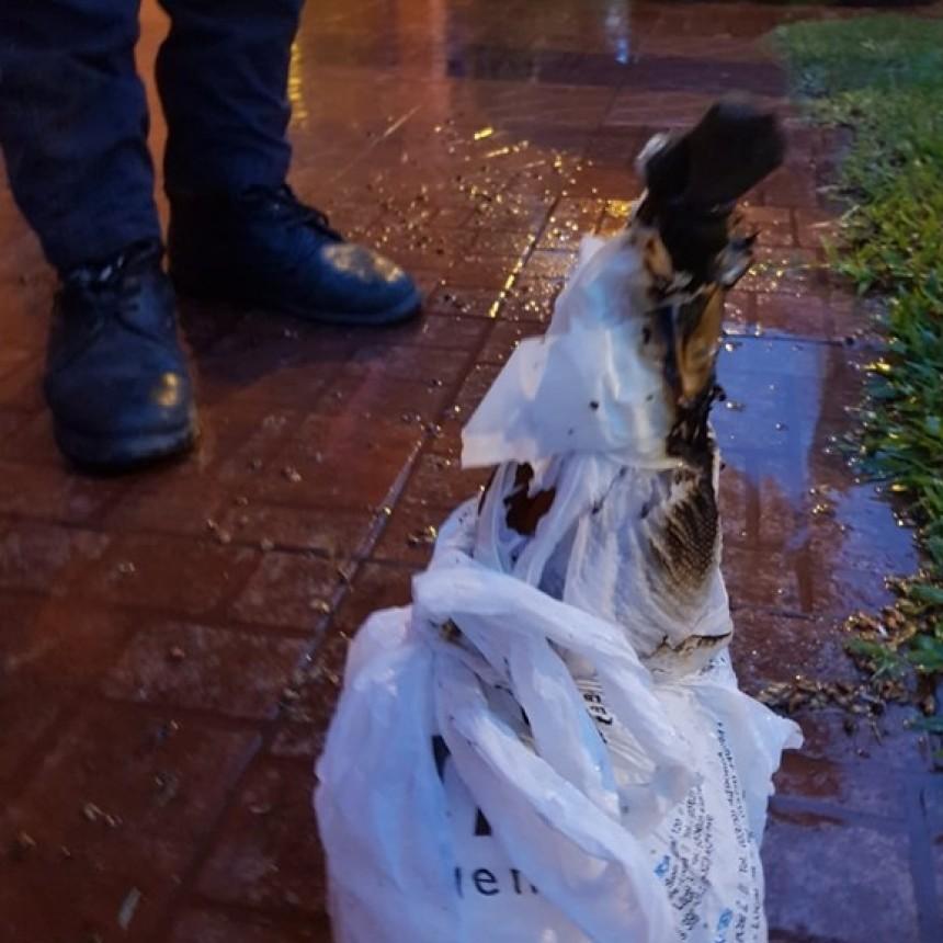 FUNCIONARIO MUNICIPAL DE LA CLOTILDE DENUNCIÓ ATAQUE CON BOMBA MOLOTOV EN SU DOMICILIO