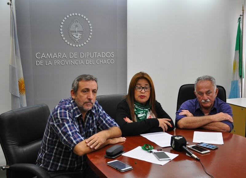 PIDEN DEBATIR EN LA LEGISLATURA CHAQUEÑA SOBRE EL PROYECTO DE INTERRUPCIÓN VOLUNTARIA DEL EMBARAZO