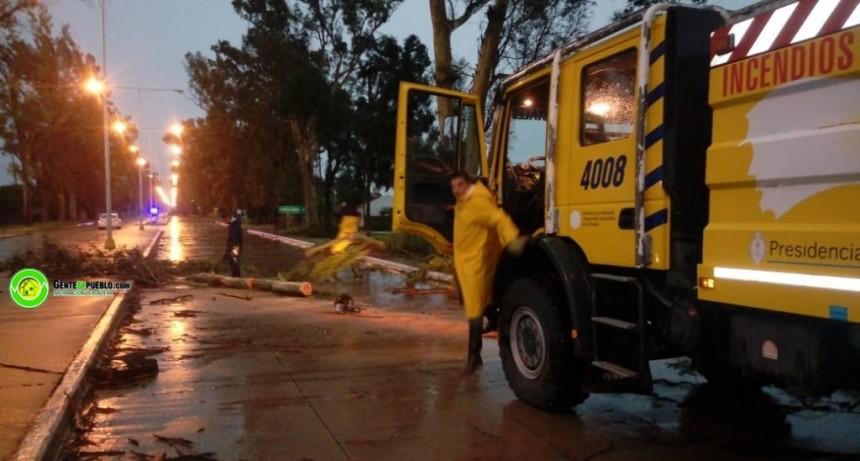 VILLA ÁNGELA: PERSONAL DEL 911 Y BOMBEROS SACAN RAMAS Y ÁRBOLES CAÍDOS EN EL ACCESO NORTE