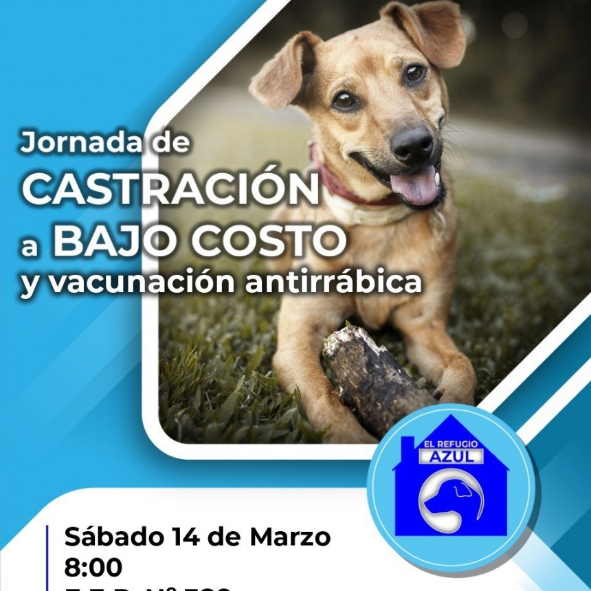 CONTINÚAN LAS JORNADAS DE CASTRACIÓN A BAJO COSTO