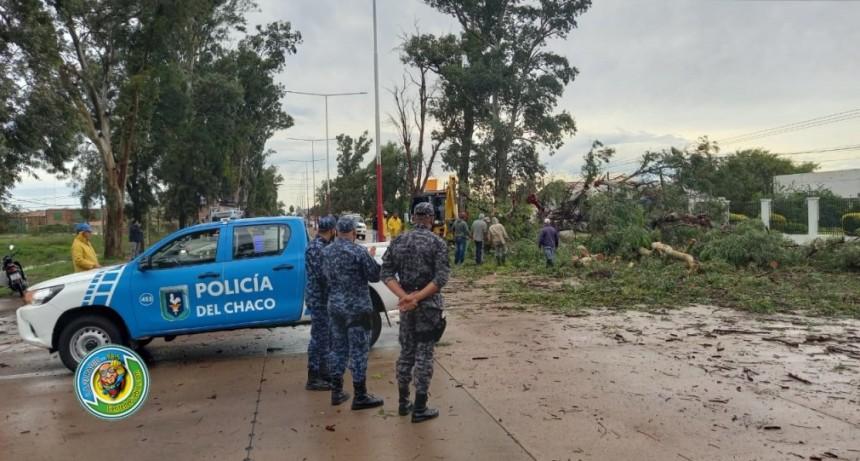 EL PERSONAL DEL 911 RETIRO RAMAS Y CONTROLO EL TRANSITO EN EL ACCESO NORTE