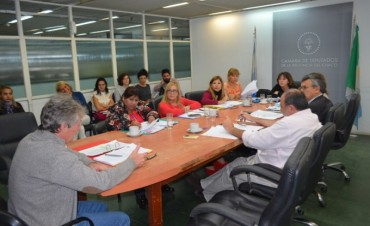 ANALIZARON LOS PROYECTOS SOBRE EXÁMENES TOXICOLÓGICOS PARA FUNCIONARIOS PÚBLICOS Y FUERZAS DE SEGURIDAD