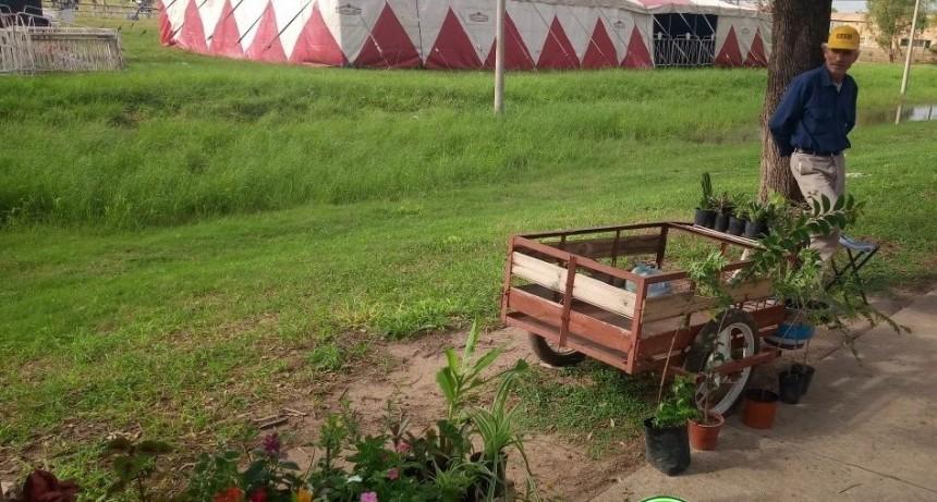 DON EDUARDO UN VENDEDOR DE PLANTAS CON TRAYECTORIA Y EXPERIENCIA