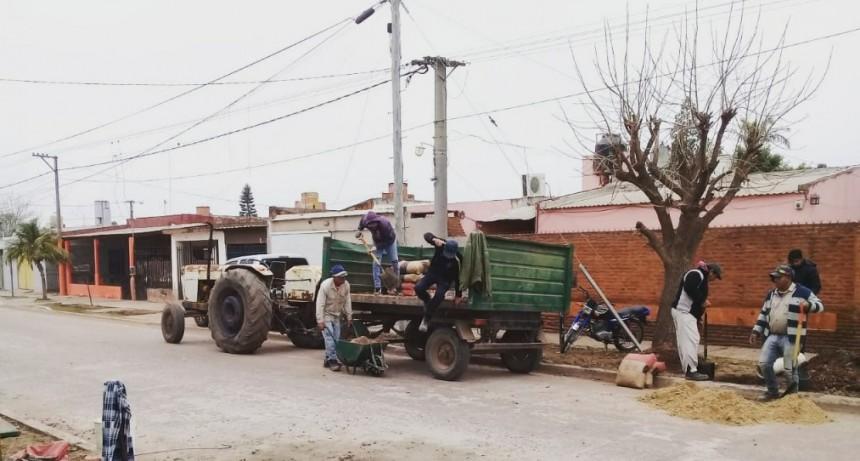 CONSTRUCCIÓN DE BASES PARA ARCOS LIMITADORES DE TRÁNSITO EN CALLE MATHURÍN