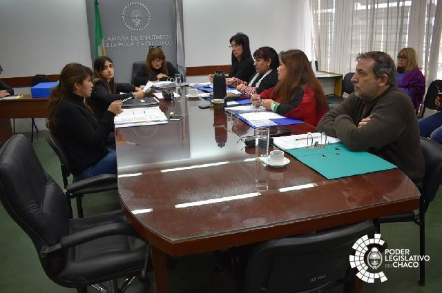SE ANALIZA EN COMISIÓN EL PROYECTO DE LEY DE PROMOCIÓN DE ENTORNO ESCOLAR SALUDABLE