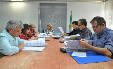 DESPACHAN INICIATIVA PARA ASIGNAR CARÁCTER LETRADO AL JUZGADO DE PAZ Y FALTAS DE PAMPA DEL INFIERNO