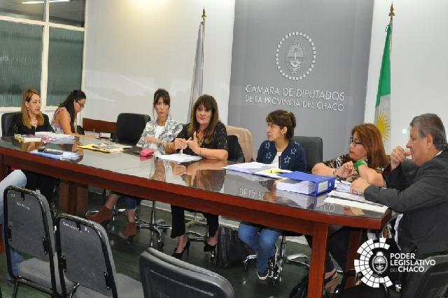 MOSQUEDA INFORMÓ SOBRE SU GESTIÓN ANTE LA COMISIÓN DE EDUCACIÓN