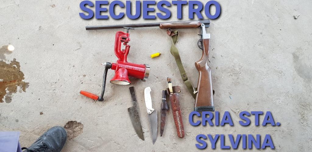 IMPORTANTE PROCEDIMIENTO POLICIAL DESBARATA BANDA DE FAENA ILEGAL EN SYLVINA