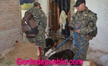 LOS PERROS CORROBORARON QUE MAIRA ESTUVO EN LA CASA DEL IMPUTADO